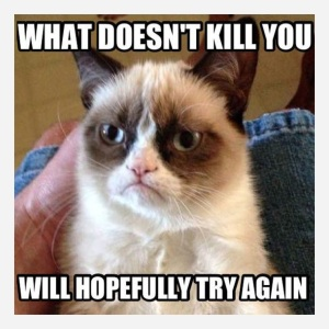 grumpt-cat